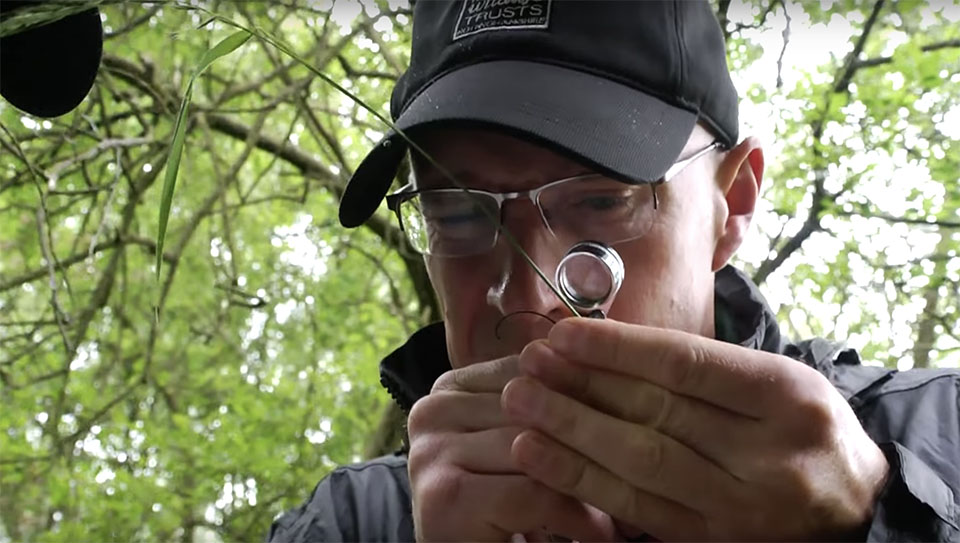 Attenborough Nature Reserve charity video